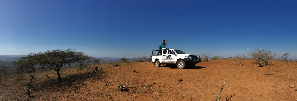 Scanning for wildlife on Mpila hill
