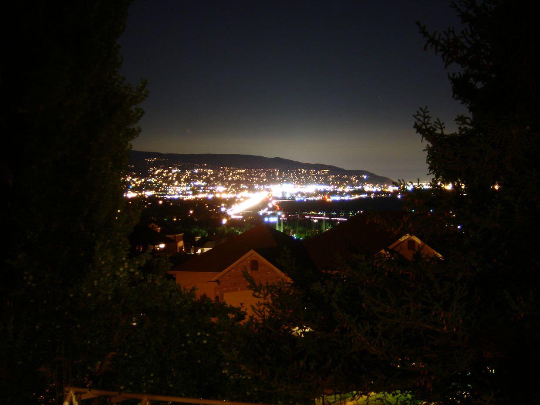 View of Salt Lake City at night