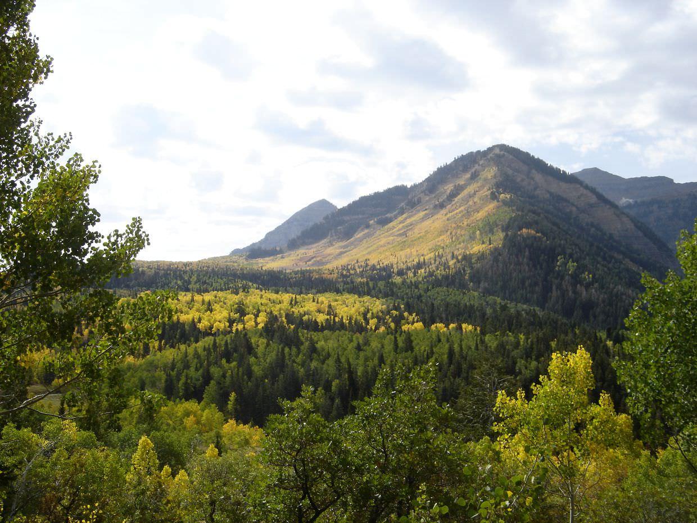 Mount Timpanogos in fall