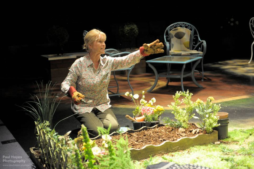 A scene from Ayckbourn's Life of Riley