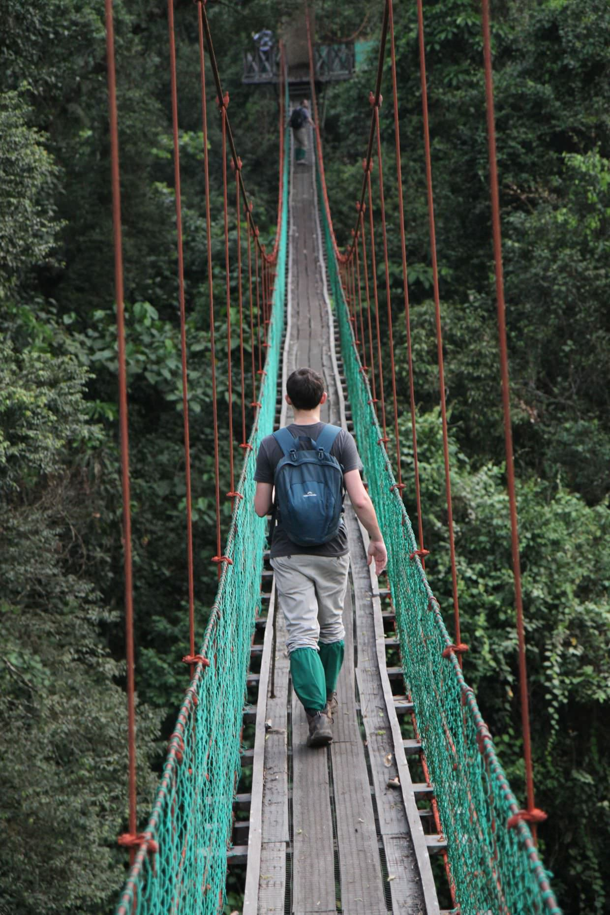Crossing a high bridge, jungle trekking in a t-shirt