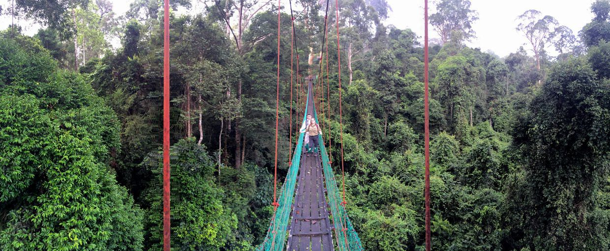 Paul and Samantha on the canopy walkway