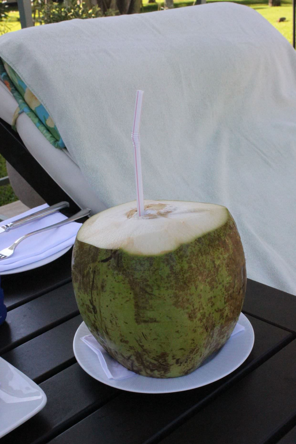 Cocktail in a coconut