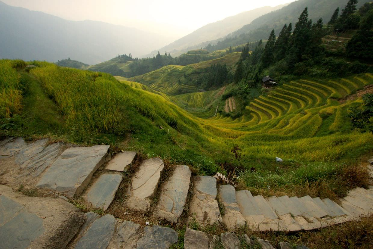 Crescent rice terraces in the late evening