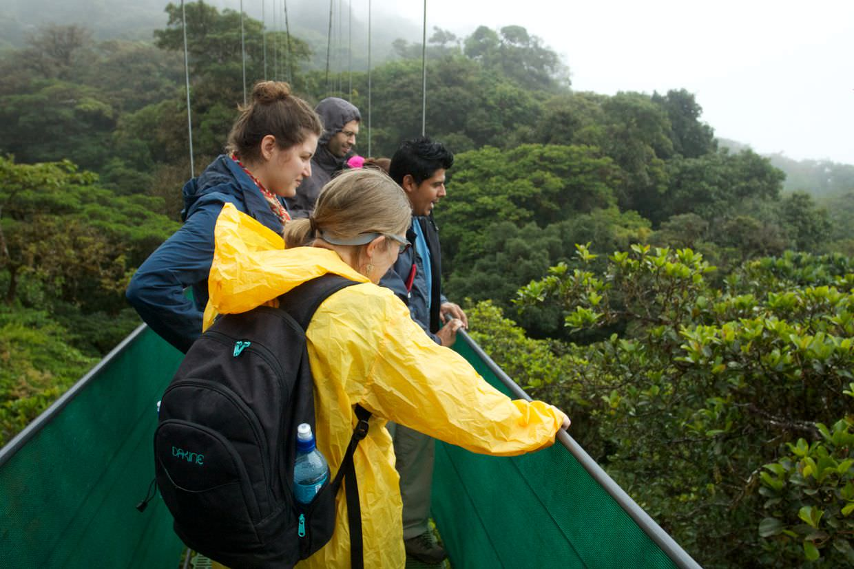 Samantha, Caroline, Clement and guide Andre on the hanging bridges, alongside an Aguacatillo tree.