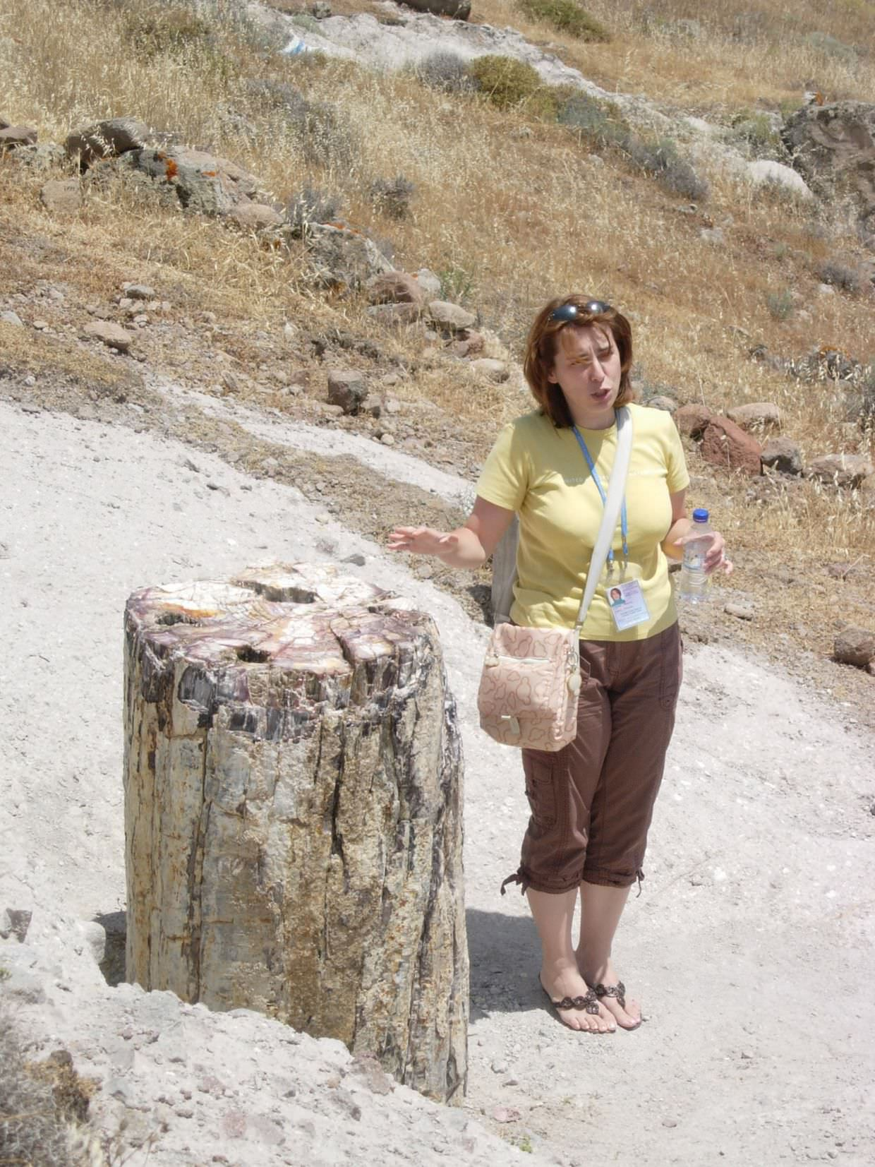 Our guide Ismini with a petrified tree trunk