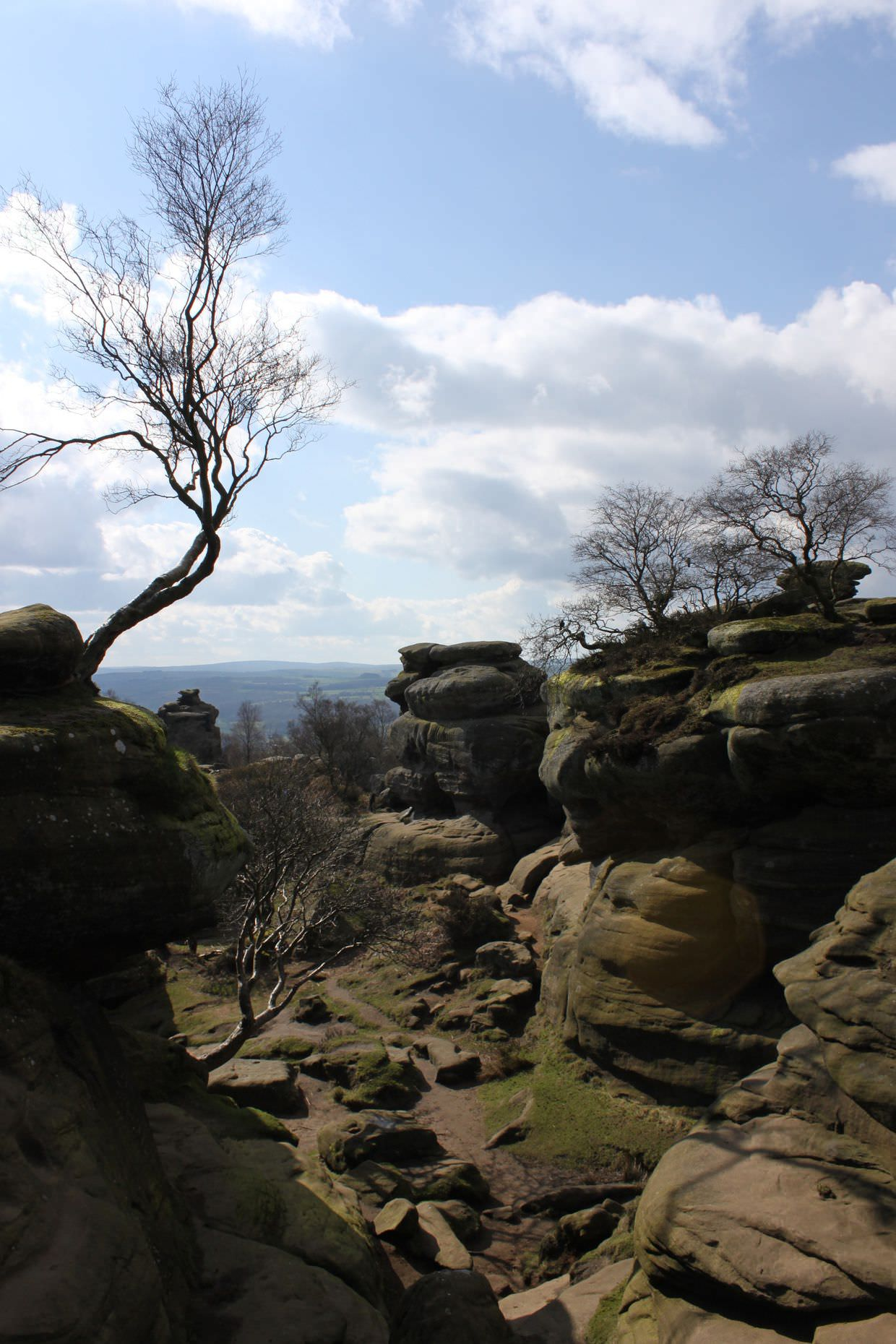 A view of Brimham Rocks, almost like a Halo map
