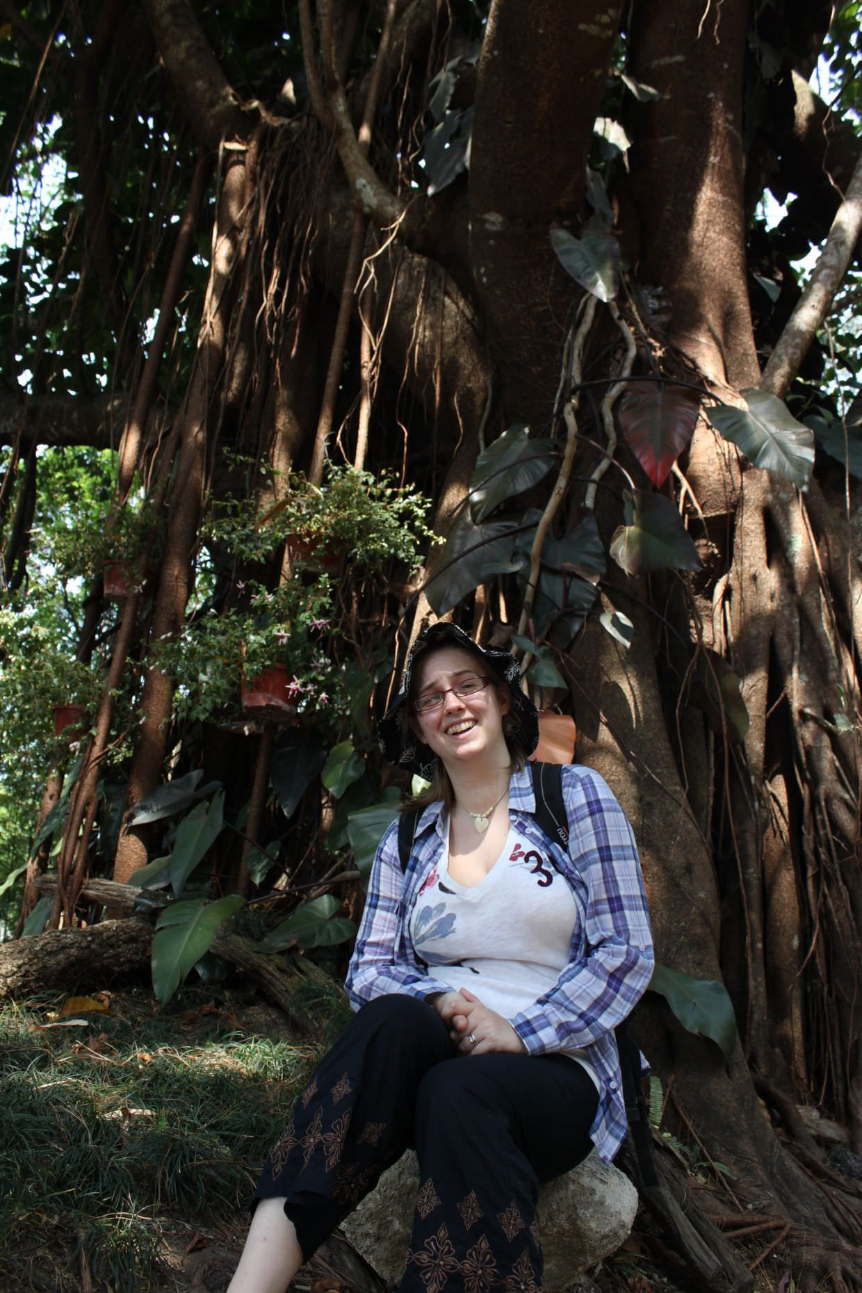 Sam under a Banyan tree