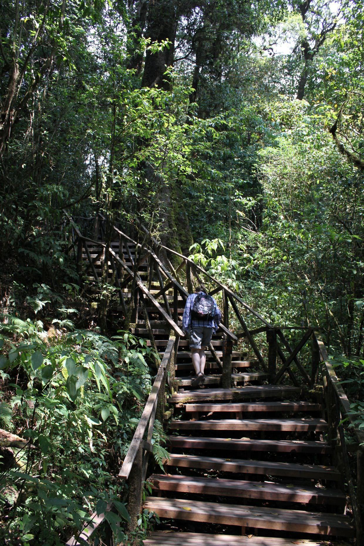 Ang Thon nature trail
