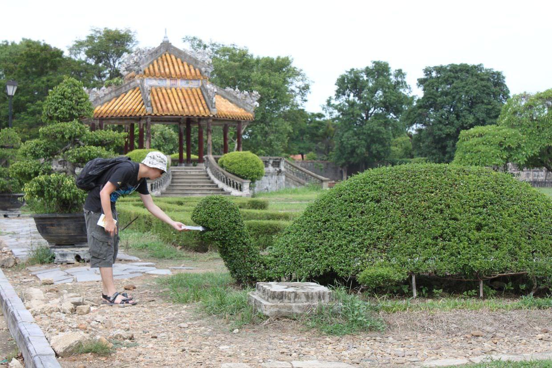 Feeding the topiary tortoise