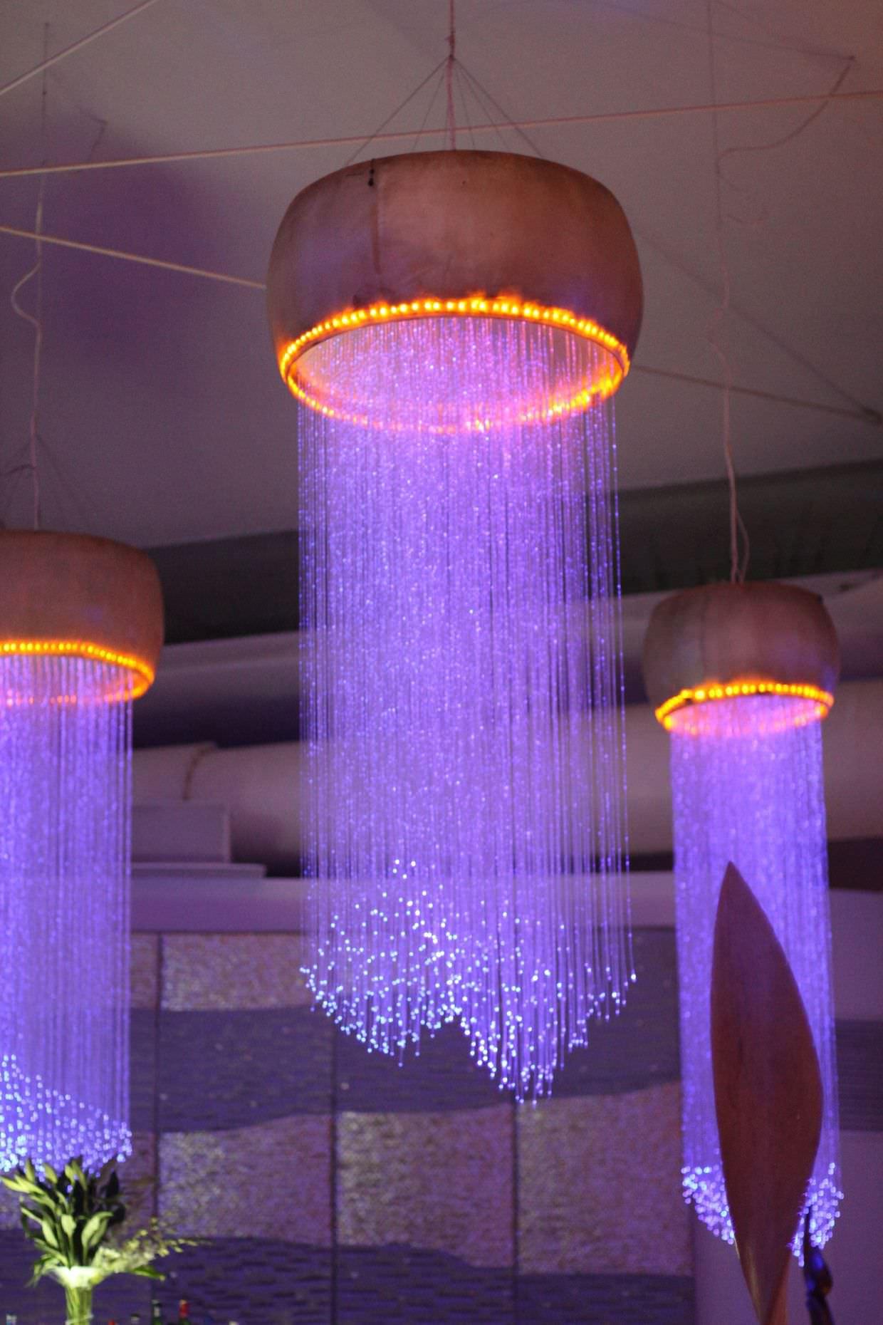 Jellyfish lights at Coast
