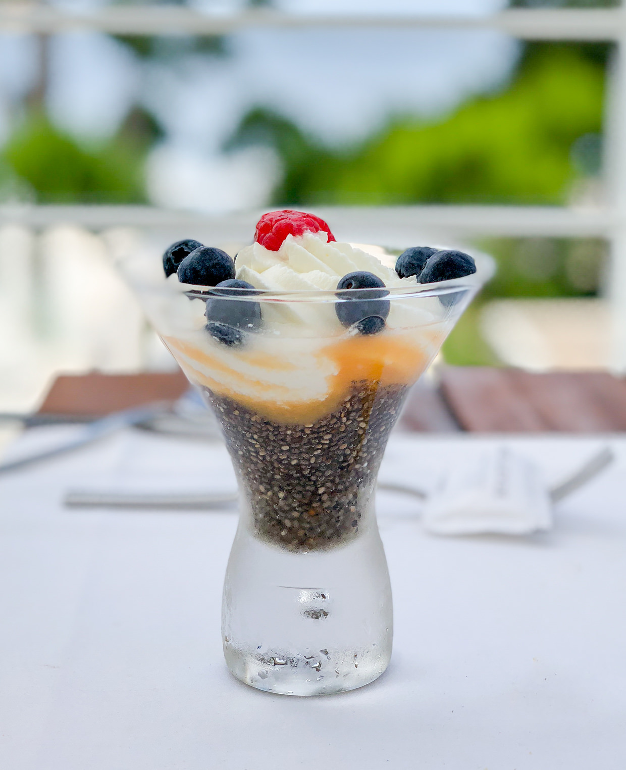 A scrumptious chia seed, yoghurt and fruit concoction
