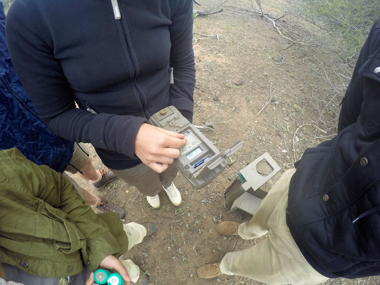 A quick camera trap stop, changing SD cards and batteries