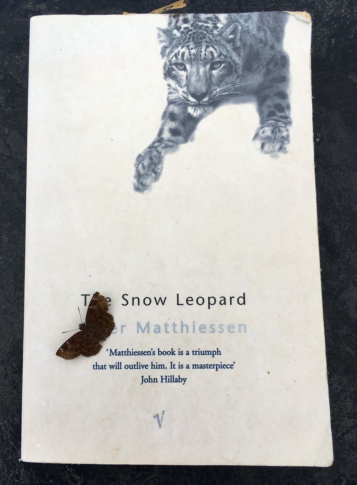 "Nepal reading material: Peter Matthiessen's ""Snow Leopard"" (with added moth)"