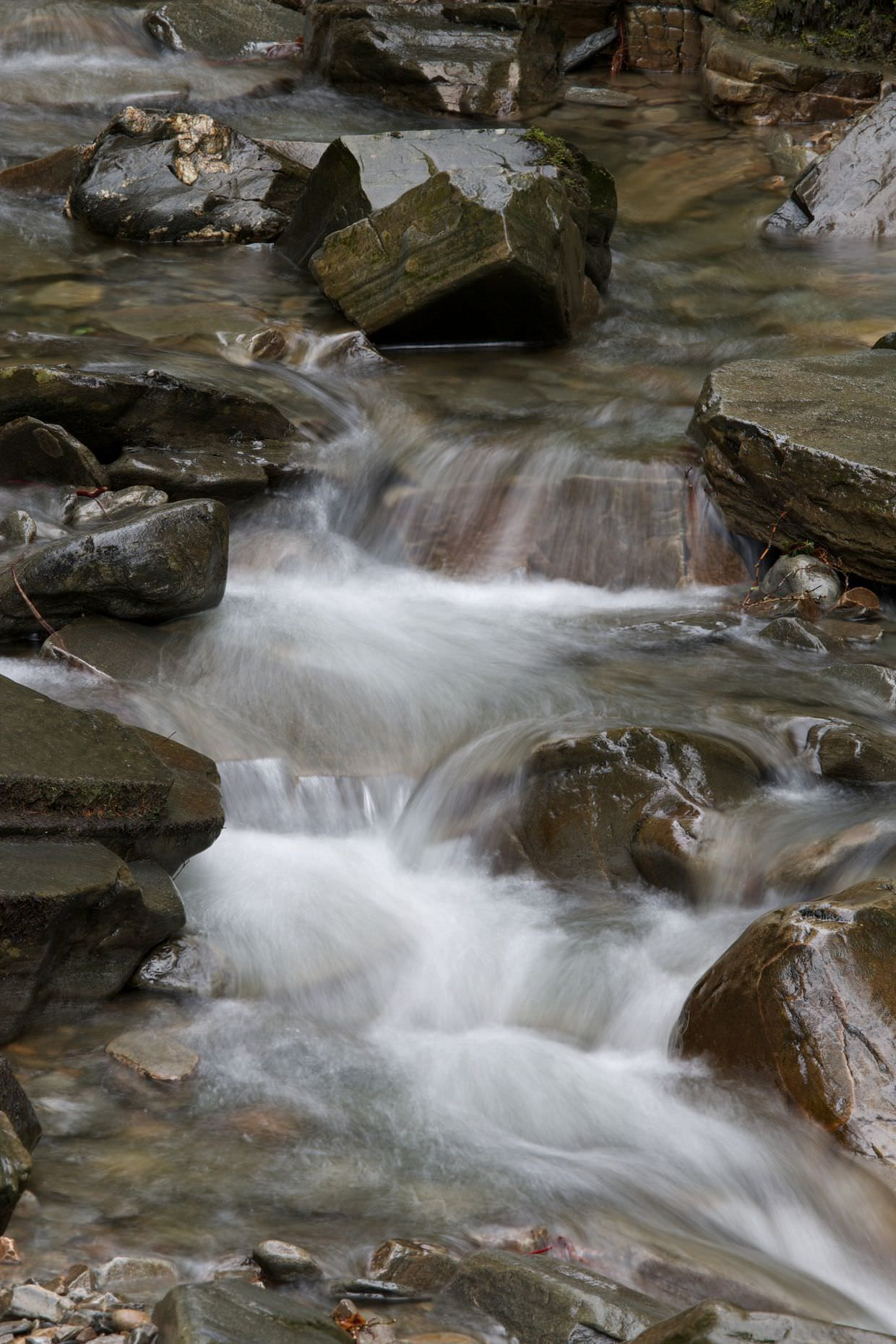 A stream, using a shutter speed that captures the stringy effect