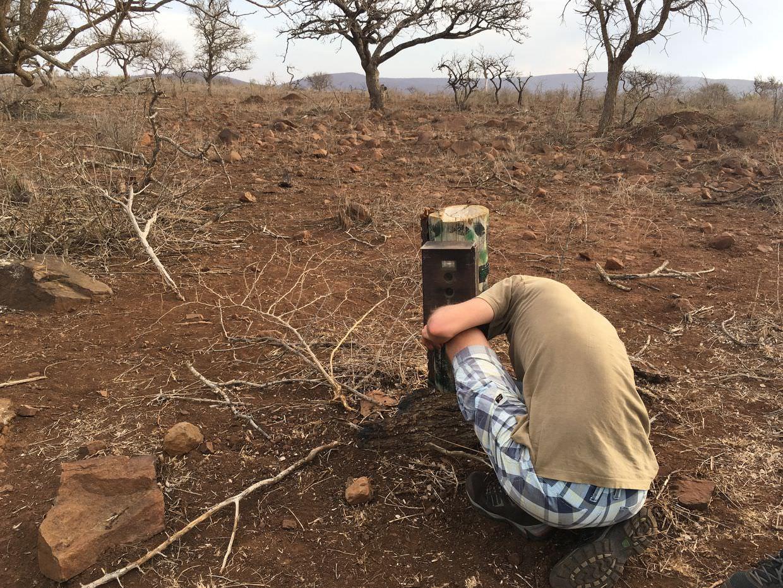 Paweł changing a camera trap
